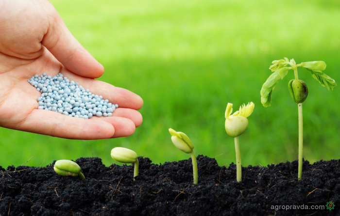 Аграрии просят разблокировать доступ к новым пестицидам