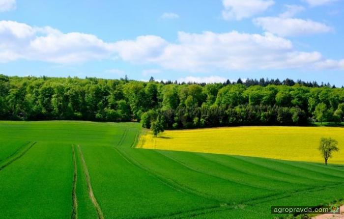 Аграрии привлекли с помощью аграрных расписок 2,85 млрд грн