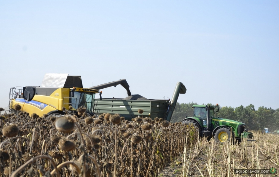 Украинский агрохолдинг получил рекордную урожайность подсолнечника