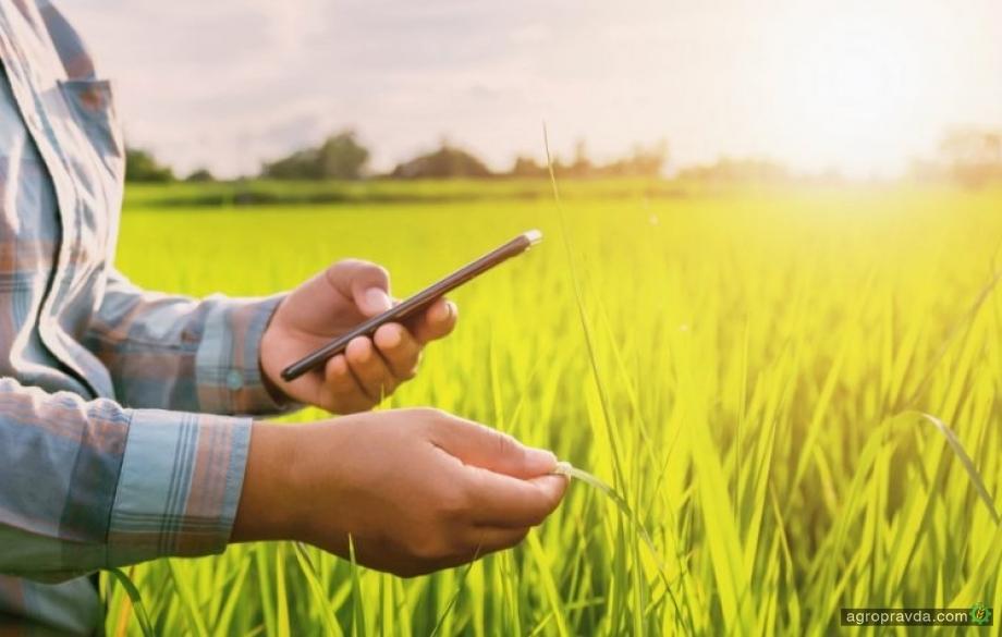 Как определить здоровье посевов с помощью смартфона