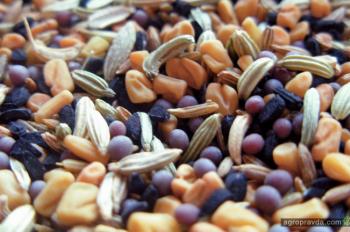 Импорт семян в Украине превысил экспорт в 26 раз