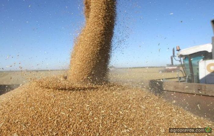 «Прометей» завершил уборку ранних зерновых