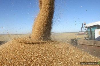 Аграрии призывают Раду снизить НДС для АПК до 14%