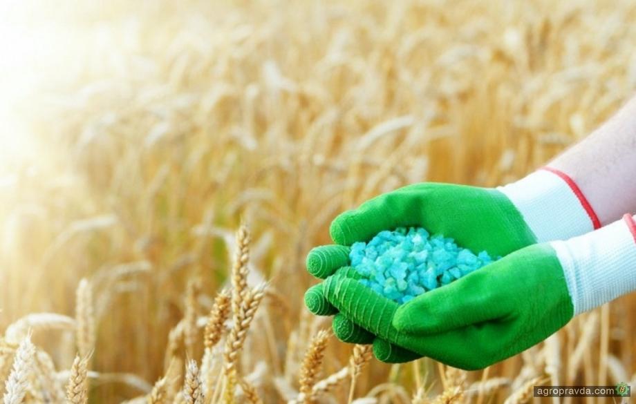 В чем особенности применения органических и минеральных удобрений