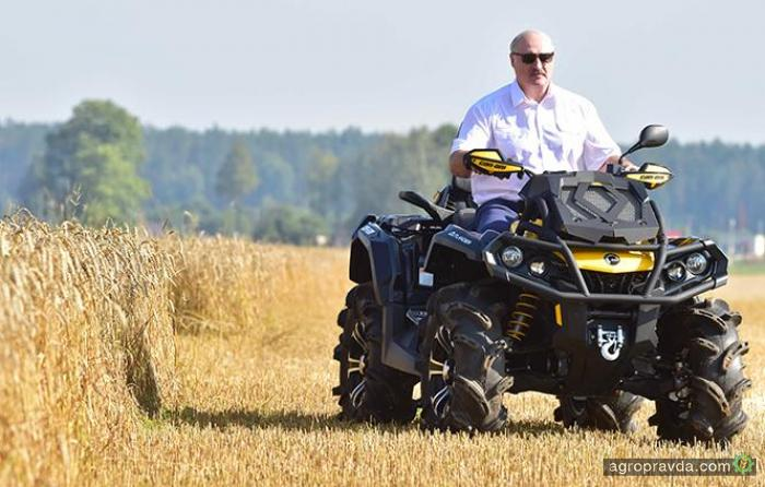Президент Беларуси приехал тестировать комбайн на квадроцикле. Фото