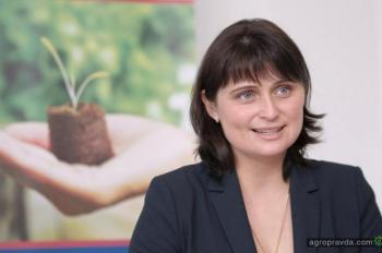 Как будут развивать села в Украине