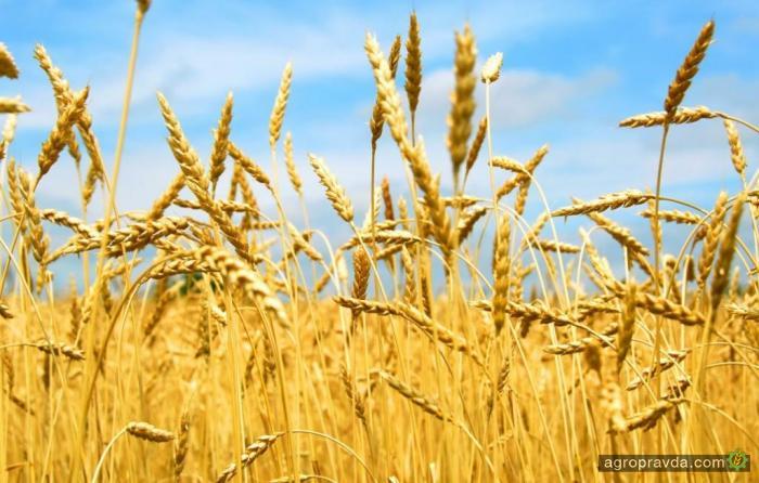 Аграрный фонд начинает кампанию по продаже минудобрений