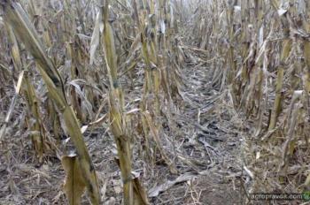 13 ошибок фермера при обработке почвы