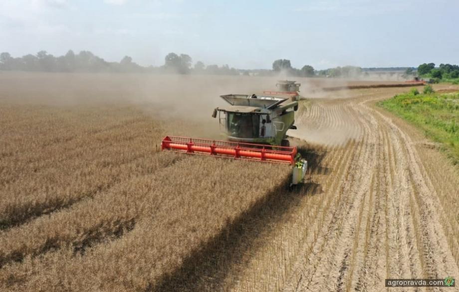 В Украине ожидается абсолютный рекорд по сбору урожая