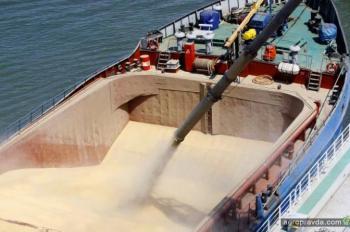 Подсчитан экспорт зерна из Украины в 2017 г.