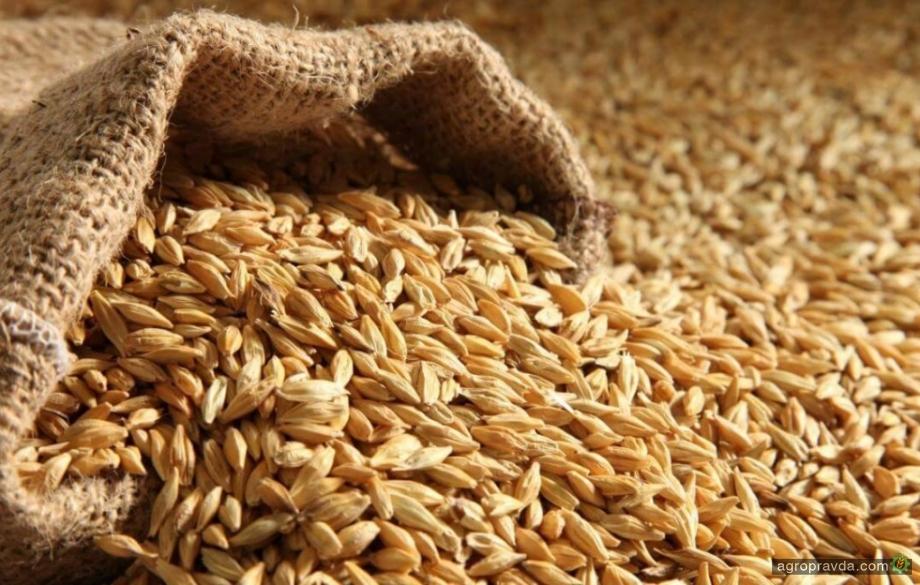 Уменьшение урожая в Украине поднимает мировые цены на ячмень