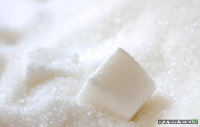 Украина произвела 1,62 млн тонн сахара