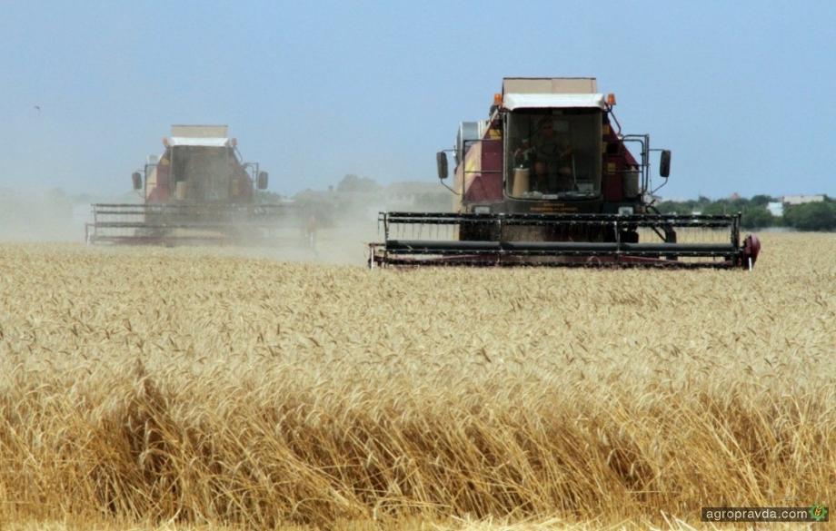 Украинские аграрии побили рекорд по сбору зерна