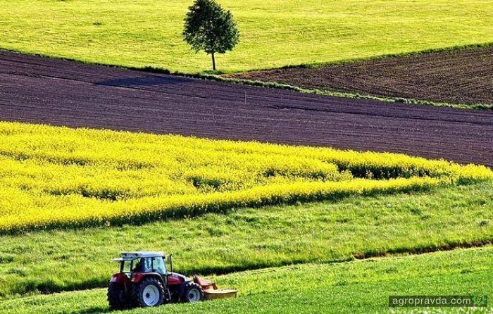 Сколько будет стоить гектар земли после отмены моратория
