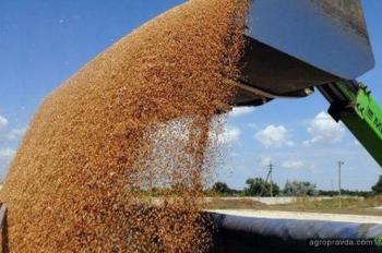 Как аграрные расписки помогают фермерским хозяйствам