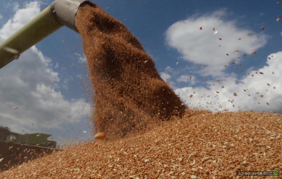 В Минэкономики прогнозируют снижение экспорта зерновых