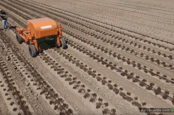 Инновации в агросектор Украины оцениваются в 5 млрд грн в год
