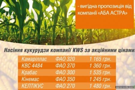На семена кукурузы KWS действуют акционные цены