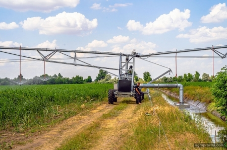 Как получать урожай 12 т/га кукурузы из года в год