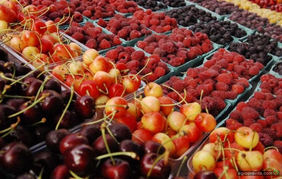 Как весенние заморозки повлияли на урожай