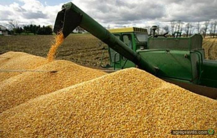 Экспорт агропродукции принес Украине 13 млрд долл.
