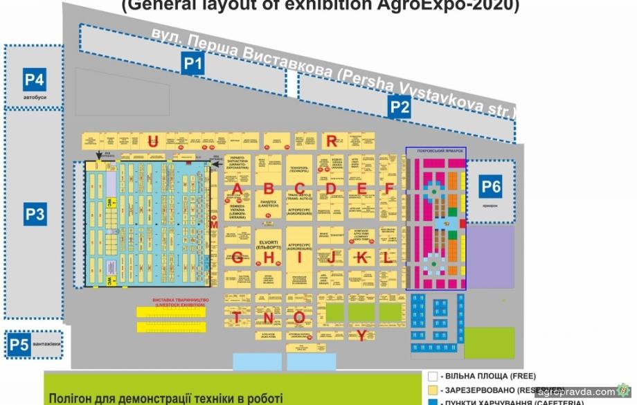 Что посмотреть на выставке AgroExpo-2020