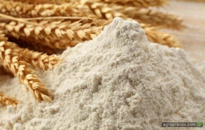 ГПЗКУ увеличивает объемы экспорта зерновых и масличных