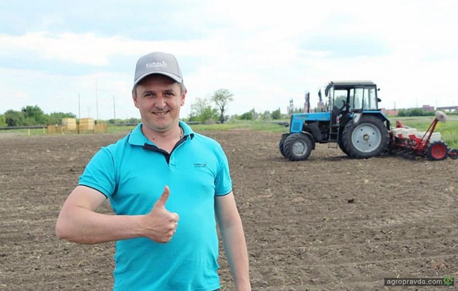 Отзывы реальных аграриев: гибриды подсолнечника