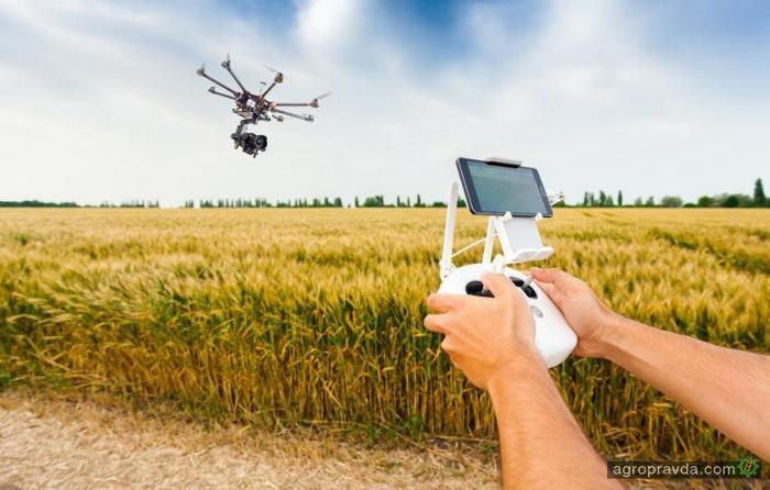 В Украине ежегодно регистрируют более 300 патентов в агросфере