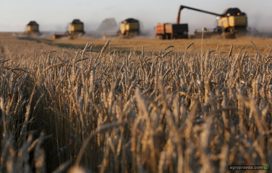 Украину ожидает рекордный урожай зерновых
