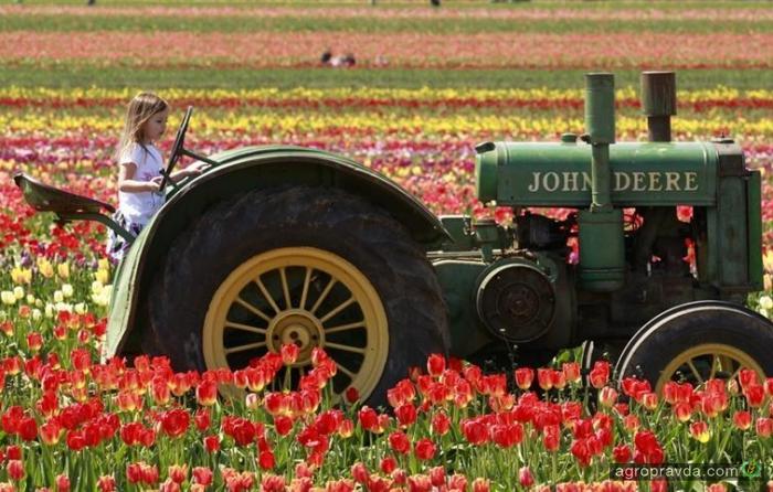 Какие трактора выбирают дамы. Фото