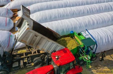 Как сократить потери при хранении кормов. Экономически выгодные методы хранения