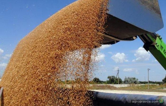 Экспорт зерновых превысил 30 млн тонн