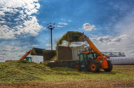 Как современные технологии позволяют сократить потери при хранении урожая
