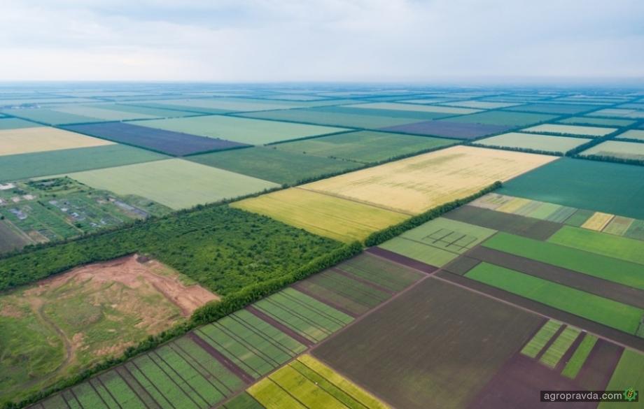 Сколько иностранных инвесторов обрабатывает украинскую землю