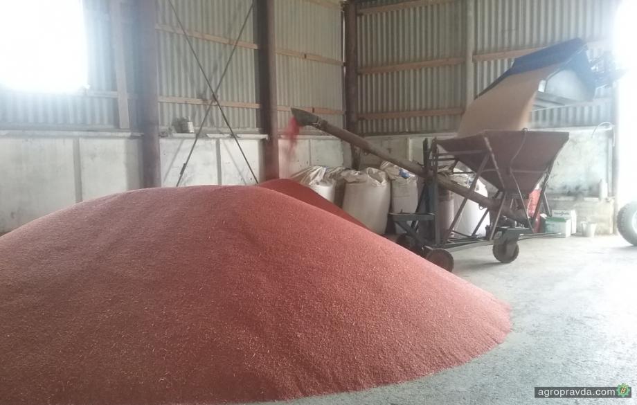 От протравителей зависит до 30% урожайности зерновых