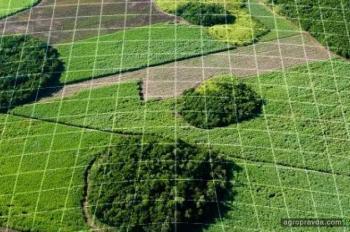 Каким станет сельское хозяйство через 5 лет