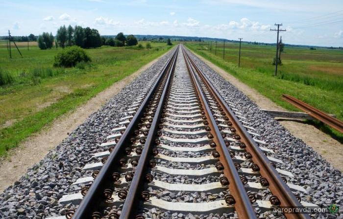 Крупный немецкий зернотрейдер решил наладить импорт по украинской евроколее
