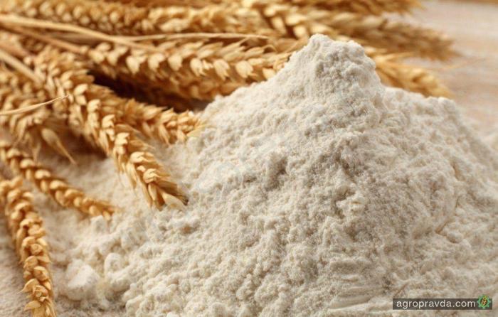 Украина на 20% увеличила экспорт пшеничной муки