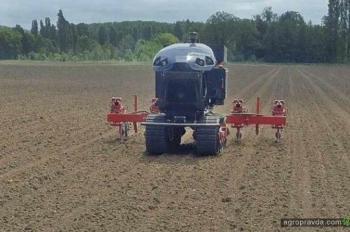 Французские роботы сами обрабатывают 30 га кукурузы