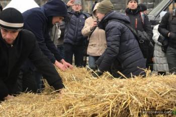 Аграрии бастовали под Кабмином. Фото