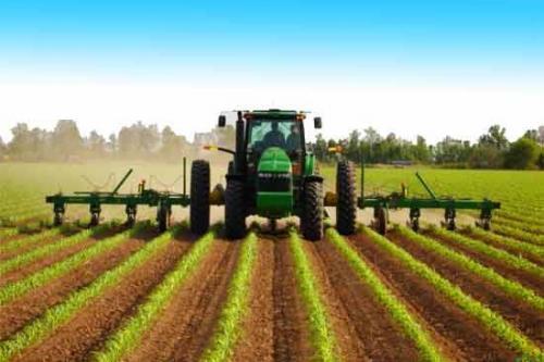В Украине закончилась пестицидная лихорадка