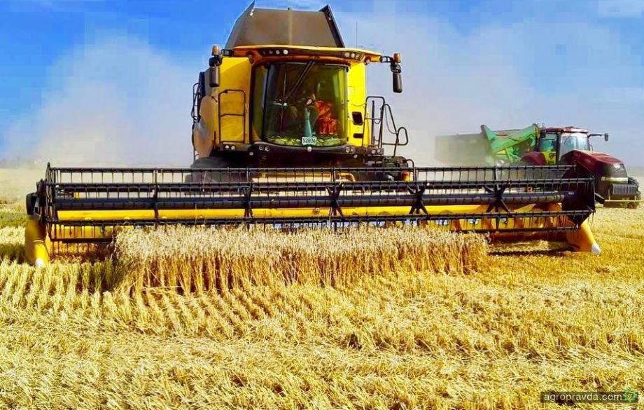 Аграрии зафиксировали рекордную урожайность озимых