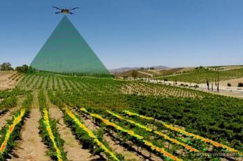 Как технологии помогают агрономам