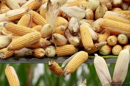 Как COVID-19 повлиял на рынок агропродовольственных товаров в Украине