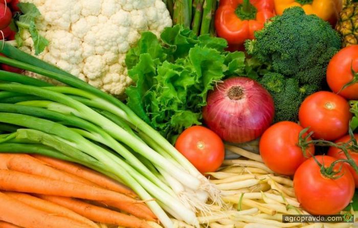 Украина установила антирекорд по экспорту овощей