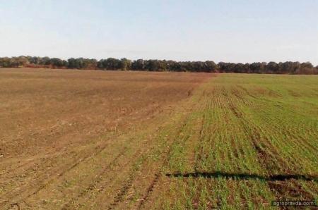 В Донецкой области началось разминирование сельхозземель