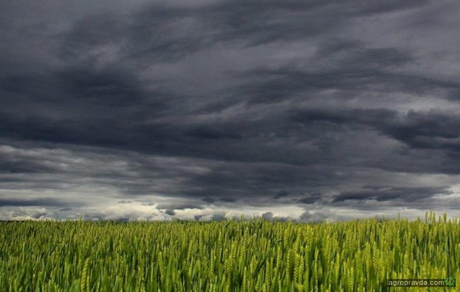 Чего ожидать аграриям от погоды в 2021 г.